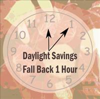 do iphones automatically change time for daylight savings daylight savings 2010 fall back 1 hour november 7th 20655